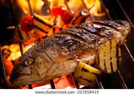 Hot fish on a grilling pan - stock photo