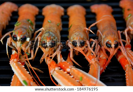 hot grilled scampi - stock photo