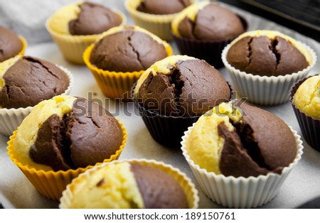 Hot homemade chocolate muffins just from oven - stock photo