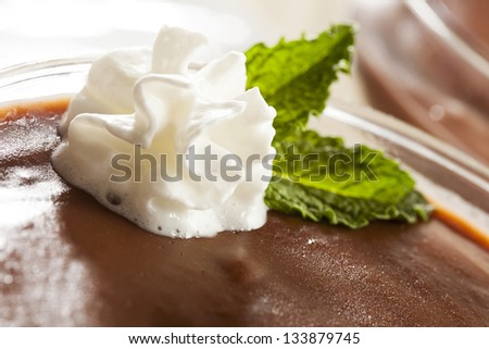 Hot Homemade Chocolate Pudding with whipped cream - stock photo