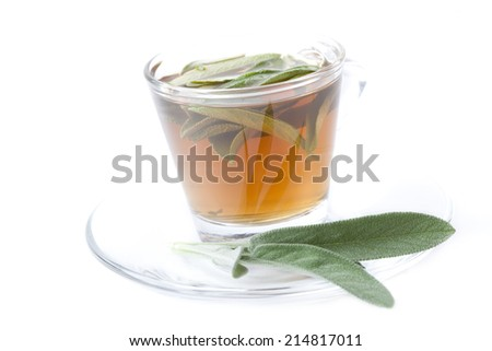 hot sage tea with fresh sage inside tea cup, silver spoon, white background, isolated, landscape format - stock photo