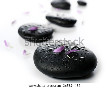 Hot spa stones with flower petals, isolated on white