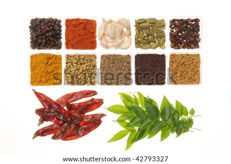 Hot Spices from Andhra, India - stock photo