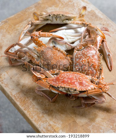 Hot Steamed Blue Crabs on wooden table. - stock photo