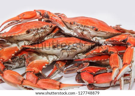 Blue crabs symbol of maryland state and ocean city md stock photo
