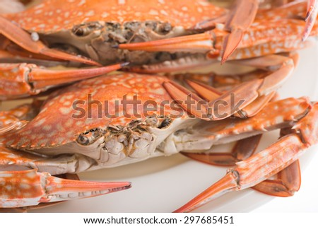 hot steamed crab asia cuisine - stock photo