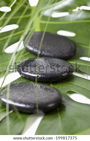 Hot stones on monstera leaf, close-up