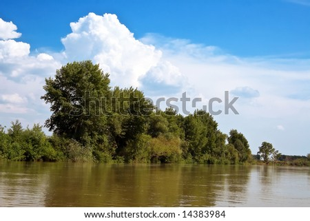 Hot summer day. On the bank of the river - the trees. A blue sky. Travel and Recreation summer in nature is very useful for health.