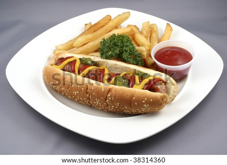hotdog and fries with tomato ketchup in a plate - stock photo