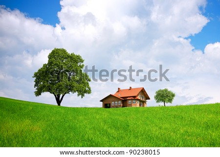 House and green field - stock photo