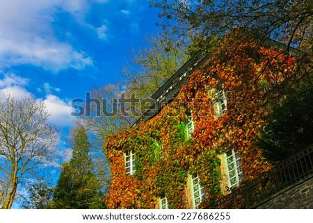 House in Autumn - stock photo