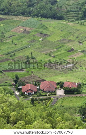 house in Green field park - stock photo
