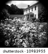 House in Southern Gothic style seen beyond a bed of daisies. The photo was taken on film with a Holga toy camera, which gives it a unique vintage appearance difficult to recreate digitally. - stock photo