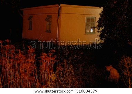 House in the black, dark night lighting only red flames reflection that firing outdoor. This campfire gave red hue for white wall of home and even for white dog sitting on the foreground. - stock photo