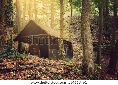House in the forest - stock photo