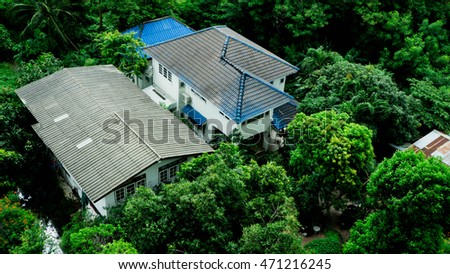 House in the forest in Bangkok