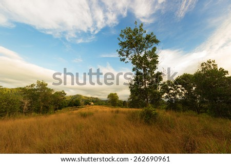 House in the grassland of Borneo,Sabah. - stock photo