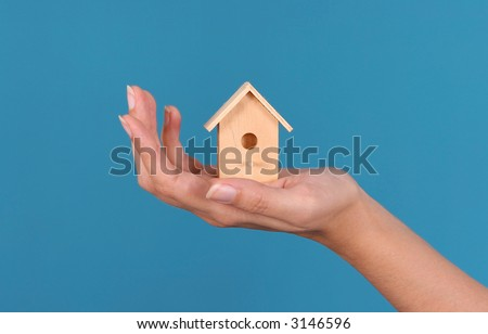 House in the hand