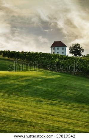 House in the summer landscape. Skalce, Slovenia - stock photo