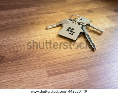 House Key On House Shaped Keychain Stock Photo 376319617 ...