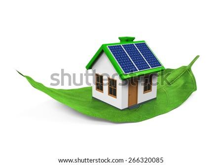 House on Leaf Isolated - stock photo