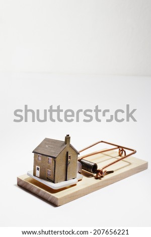 House on Mousetrap - stock photo