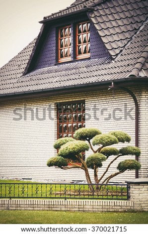 House Outdoor Yard With Little Evergreen Tree - stock photo