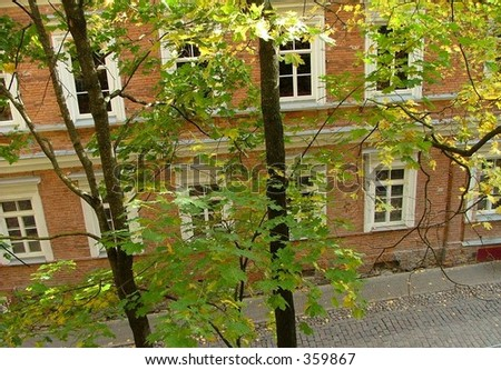 House through leaves