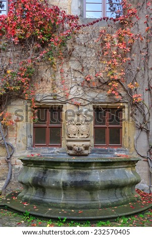House wall, fountain with colorful vines and autumn leaves in Germany - stock photo