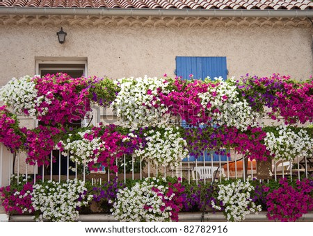 House with flower in provence, France - stock photo
