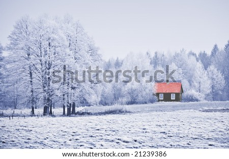 House with red roof among trees in frost. Winter scene.