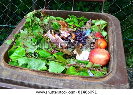 Household bio organic food waste in rubbish bin ready for recycling - stock photo