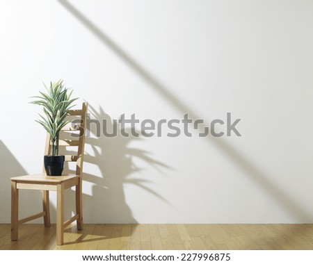 houseplant on a chair with sun light - stock photo
