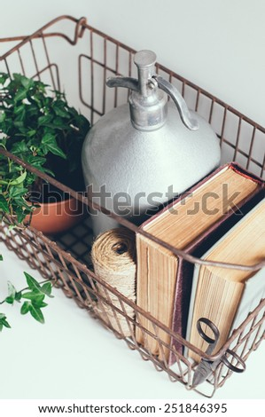 Houseplant, vintage siphon and books in an old metal basket on a white background - stock photo