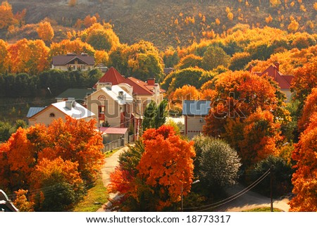 Houses among the autumnal trees. Sun weather. - stock photo