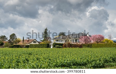 Houses next to a crop field in Switzerland
