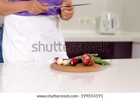 Housewife standing at a counter in the kitchen chopping fresh vegetables and onions to be added as ingredients to her recipe - stock photo