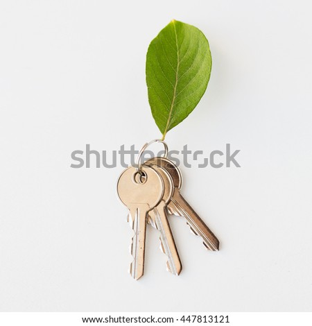 housing, environment and ecology concept - close up of house keys and green leaf trinket - stock photo