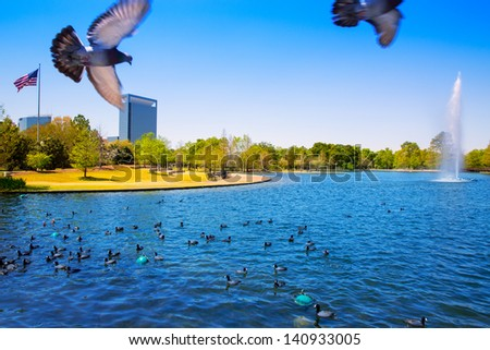 Houston Mc govern lake with doves spring water and green grass in Texas - stock photo