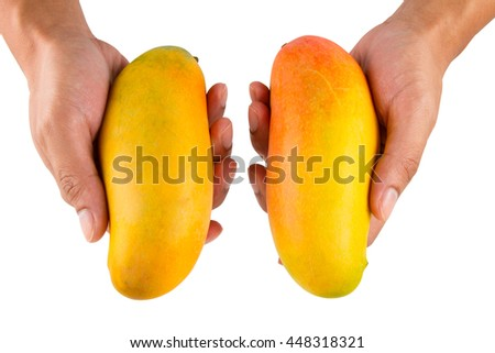 How to Choose the Best Ripe and Delicious Mango fruit - stock photo