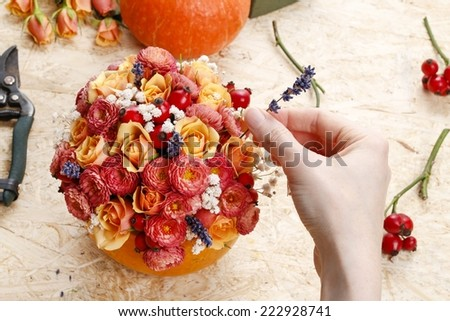 How to make a Thanksgiving centerpiece - step by step: arrange flowers into the pumpkin - stock photo