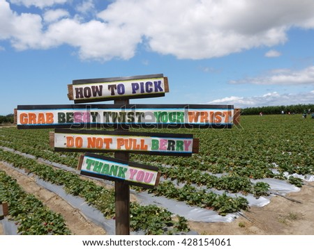 how to pick sign in the all you picking farm