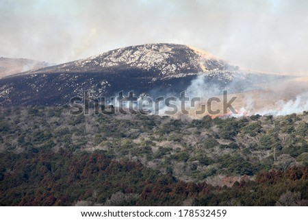 Huge bush fire at the mountain in Japan - stock photo