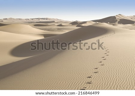 Huge dunes of the desert. Fine place for photographers and travelers. Beautiful structures of sandy barkhans. Background for design and creativity. - stock photo