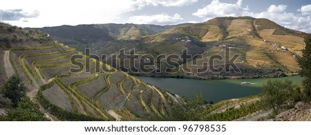 Huge panoramic picture of the world famous vineyards of Porto wine next to Douro river.(UNESCO World Heritage Site) - stock photo