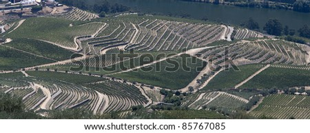 Huge panoramic view of the world famous vineyards of Porto wine next to Douro river. - stock photo