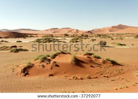 Huge sand dunes of Sossusvlei, Namibia, Africa - stock photo