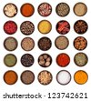 Huge spices collection, isolated on white background - stock photo