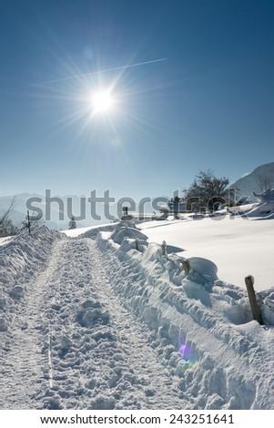 huge truck tracks in snow at austrian winter landscape - stock photo