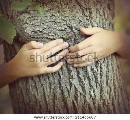 Hugging a tree - stock photo
